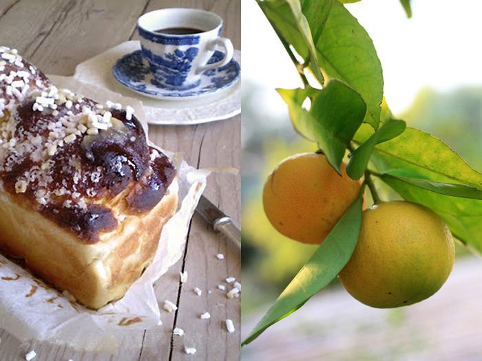Brioche al miele e mandarino