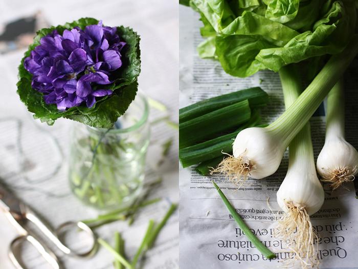 cipollotti per la vellutata di broccoli