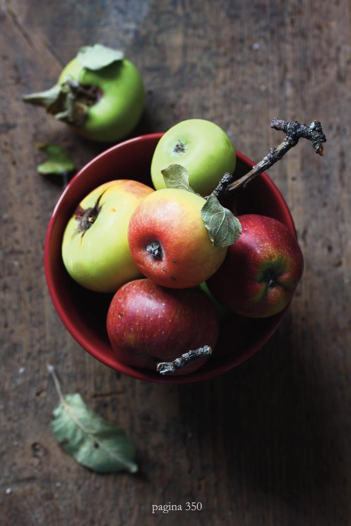Fragole a merenda: il libro (una ciotola di mele)